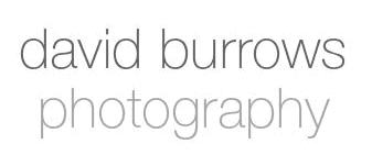 Dave Burrows
